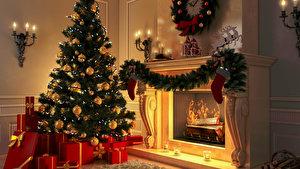 Weihnachtsbaum Selber Schlagen Berlin Brandenburg.Weihnachtsbäume Selber Schlagen Adressen Weihnachten In Berlin