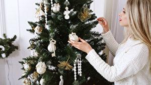 Weihnachtsbaum Poco Domäne.Verkaufsstellen Für Weihnachtsbäume Weihnachten In Berlin