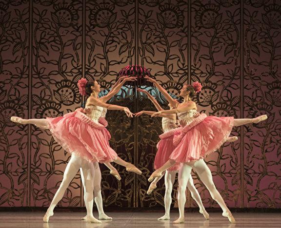 Ballett Weihnachten 2019.Der Nussknacker Weihnachten In Berlin