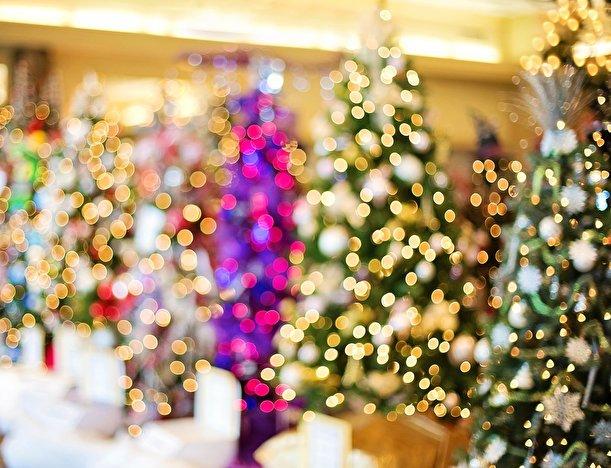 Weihnachtsbaum Berlin.Der Traditionelle Weihnachtsbaum Künstlich Oder Lieber Natur Pur